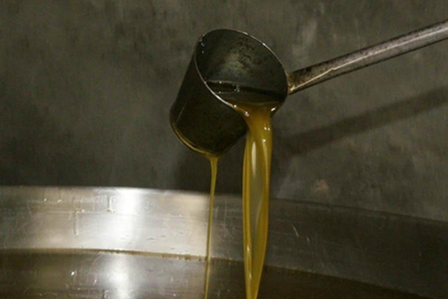TERRA D'ASPRES: el aceite que se puede beber